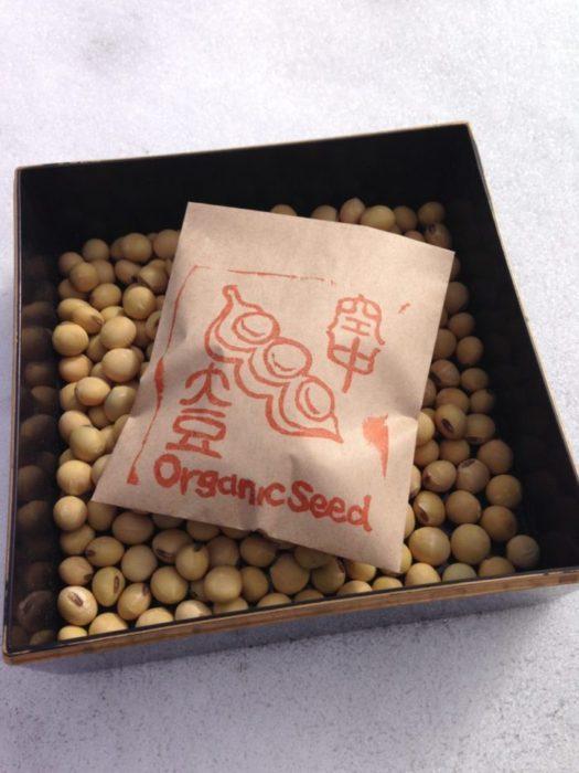大豆 種子 固定種 自家採種 オーガニック
